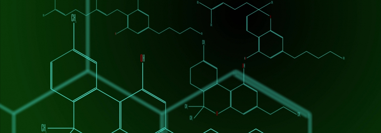 Kaksi Uutta Kannabinoidia Löydetty