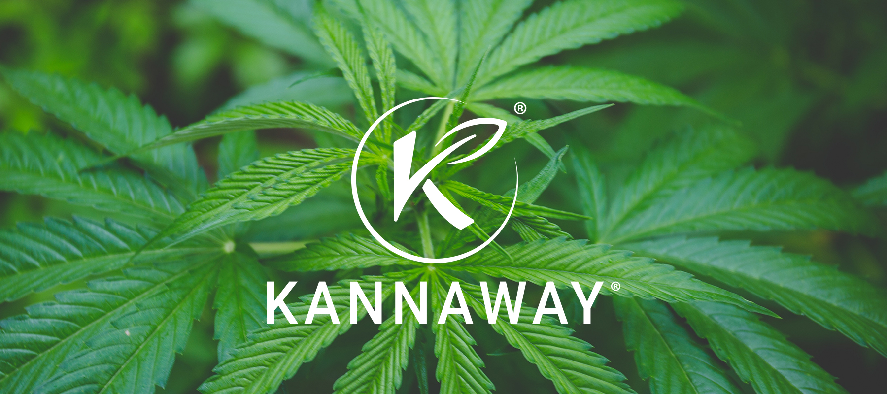 FDA testing of Kannaway CBD products confirms high-quality standard