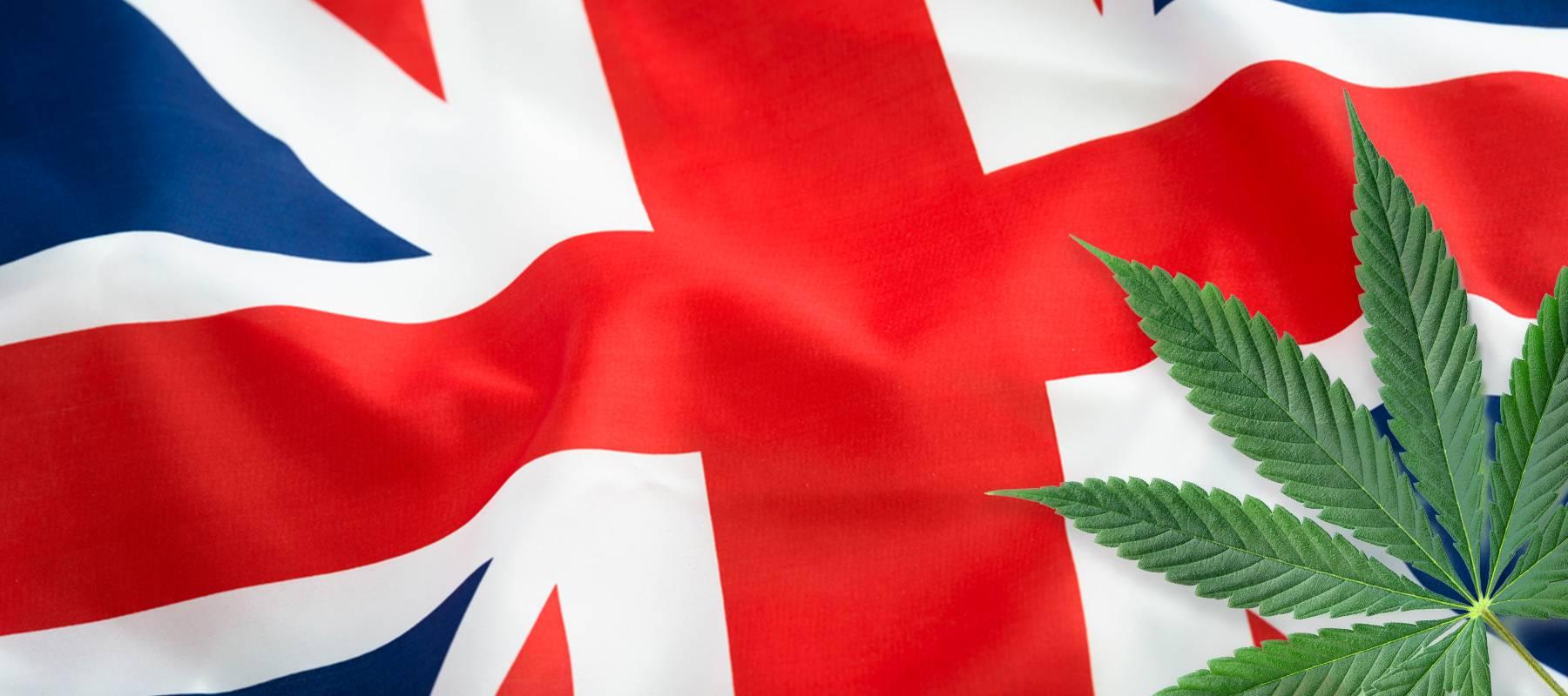 CBD in the post-Brexit United Kingdom
