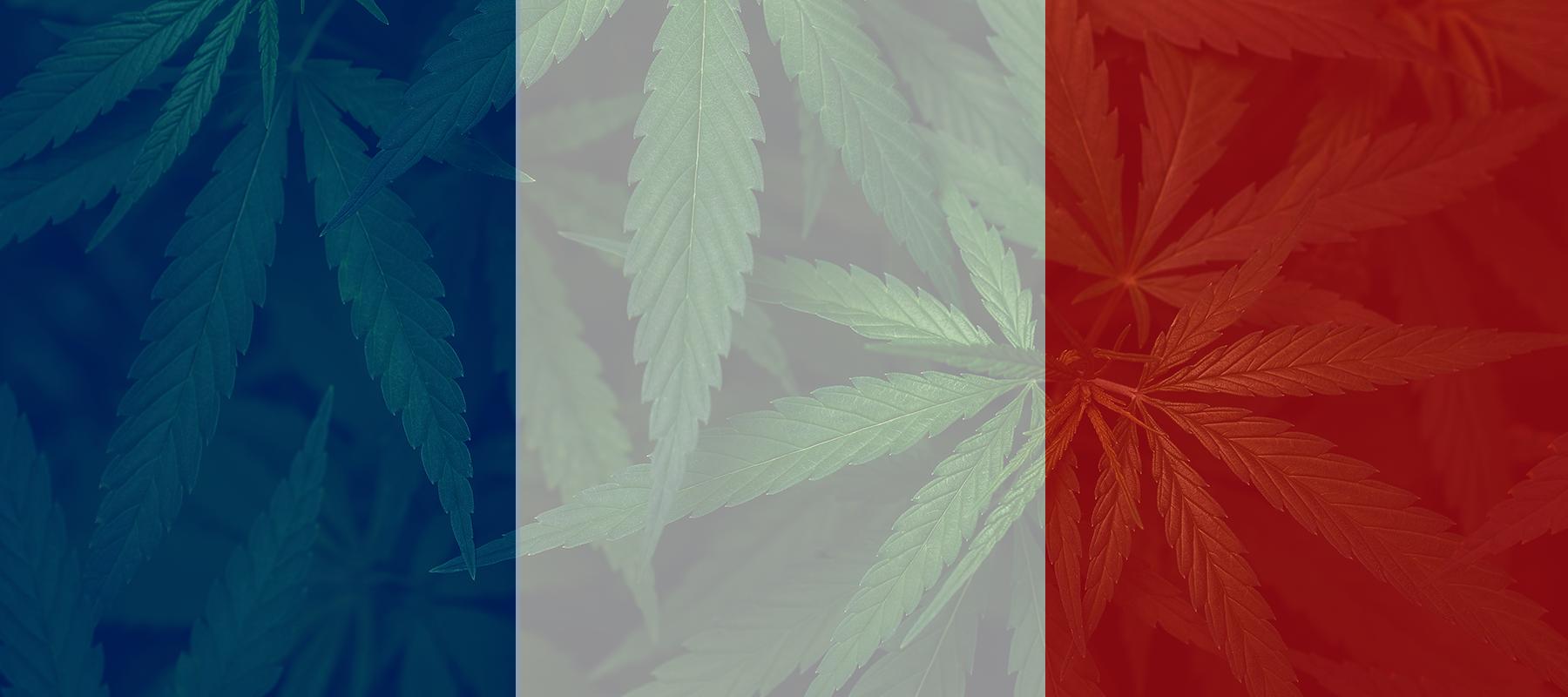 Is Hemp & CBD Legal in France?